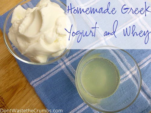 how to make greek yogurt at home in hindi