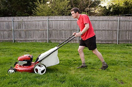 Mow people's lawns.