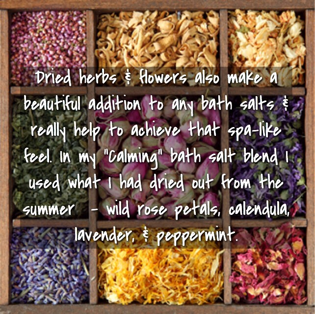 DRIED HERBS & FLOWERS