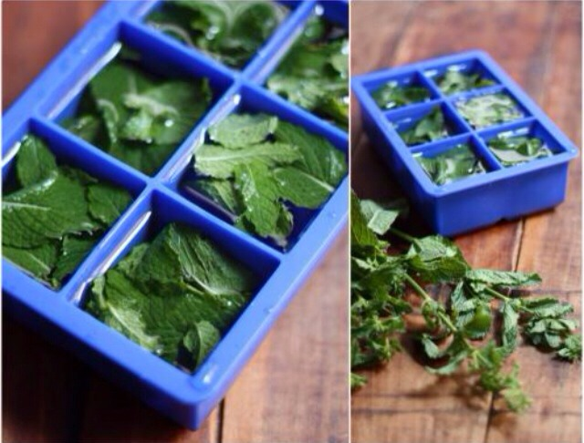 Add the chopped mint leaves and then add water to the ice cub tray.