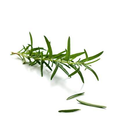 Rosemary for better focus at work The scent can improve concentration, speed and accuracy during mental tasks, per a study at Northumbria University in England. Other recent research found it may boost memory, too.