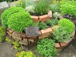 1. Plant an herb garden! An awesome way to get into gardening is some potted herbs in your kitchen. They are easy to grow and will yield herbs for your dinners all year!