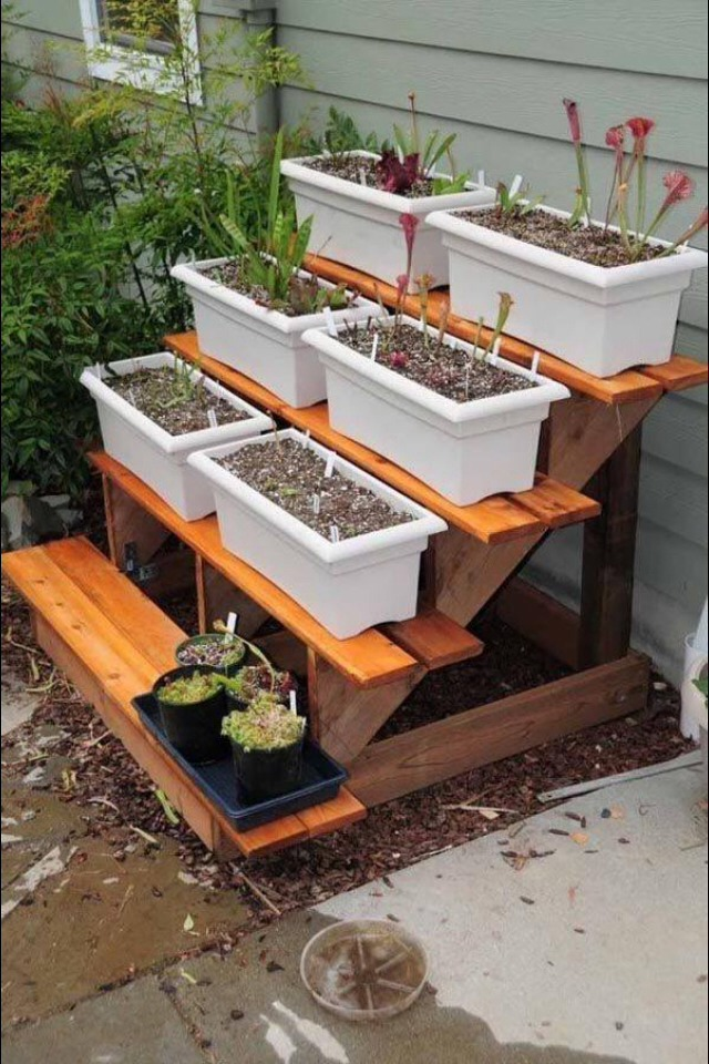 Recycle your refrigerator vegetable drawer into garden decoration
