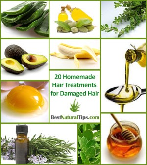 Olive oil,avocado,honey,aloe Vera,lavender oil