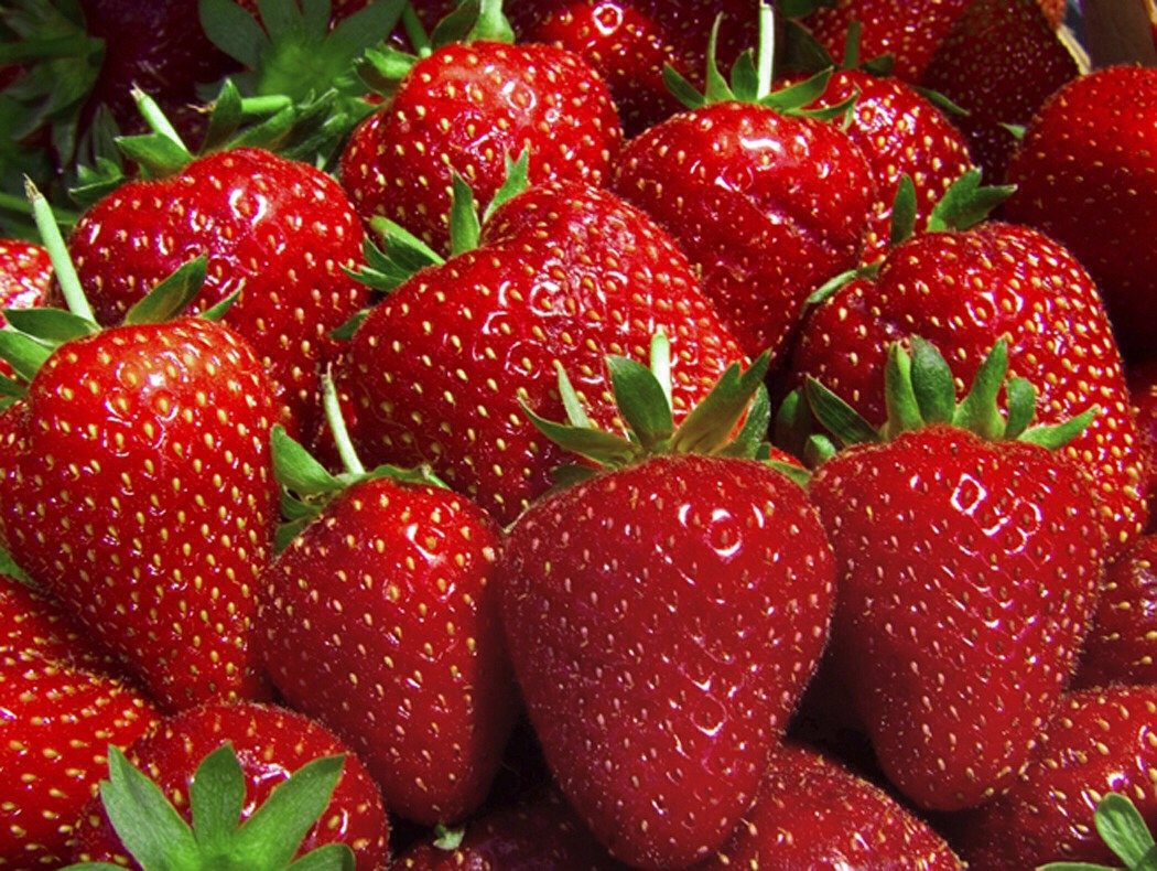 What you need: •2 tbsp of honey •juice of 1 small lemon •1/4 cup of plain Greek yogurt  •1/4 cup smashed strawberries