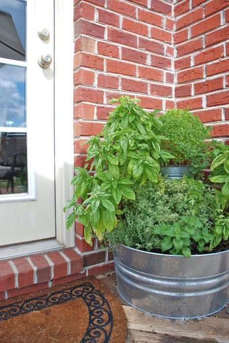 Hi, I want to share my back porch herb garden with you before the season ends.  I meant to share when I made it and all the plants were cute & small... but time & the plants have gotten away from me so better late than never.