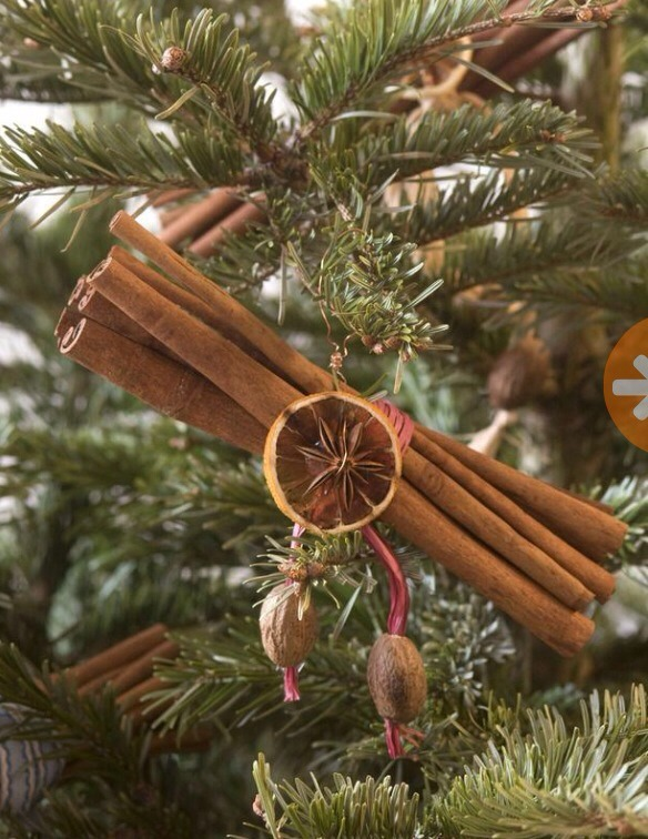 Cinnamon stick ornaments, who would've thought?!