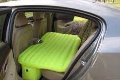 Have your pets sit on an floater or a windshield cover to keep your seats clean