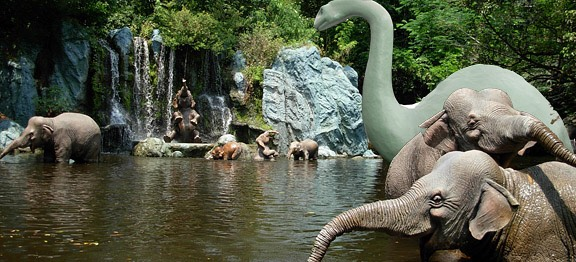 Jungle Cruise Set sail for high adventure on a tour of the most exotic and exciting rivers across Asia, Africa and South America.  Height: Any FP+: Yes