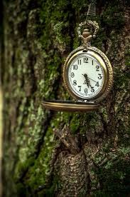 5. Always have time to take breaks, don't over study take breaks even if its 15 minutes⌚️