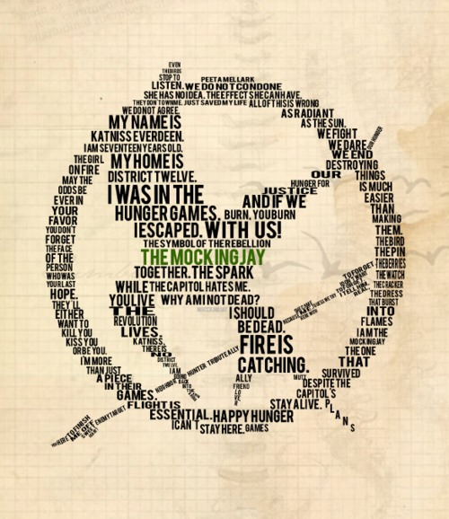 I get many questions on the Hunger Games Trilogy. 'Are they good?' So here is what I think of them.