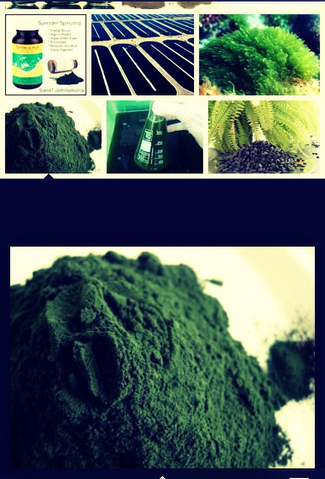 Spirulina~ sends signals to the thyroid gland to produce thyroxin which in turn stimulates body's metabolic rate