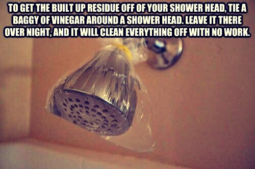 Put vinegar in a bag and let it sit overnight on your shower head. You won't believe what it cleans out, and will make your shower head work like new.