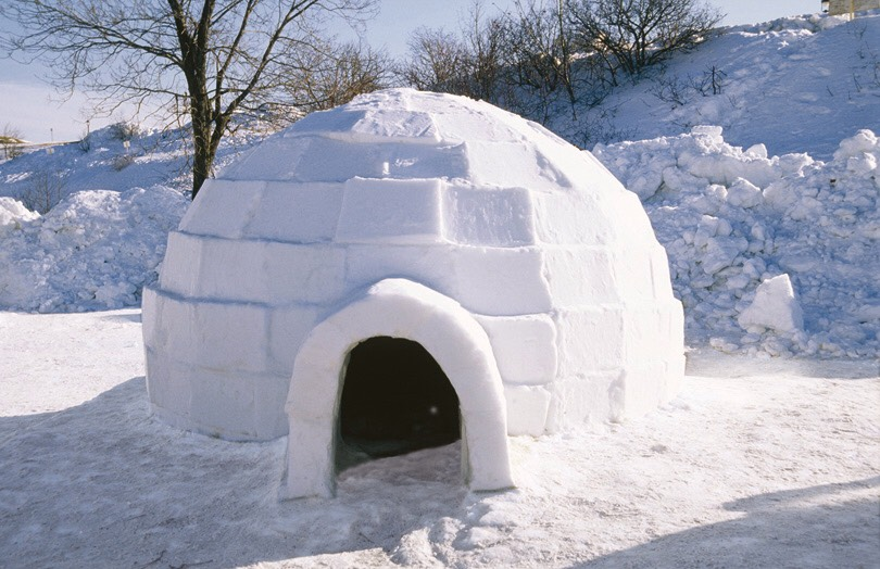 2.) snow igloo's are fun! Even though it's hard to make it might not look great but also try you will have fun.