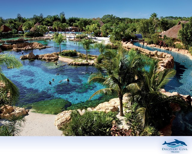 Discovery cove is amazing! Swim with fish, relax, and eat! With your admission you get all your food all day, wet suit, sunscreen, and swimming with amazing animals it is so worth the price!