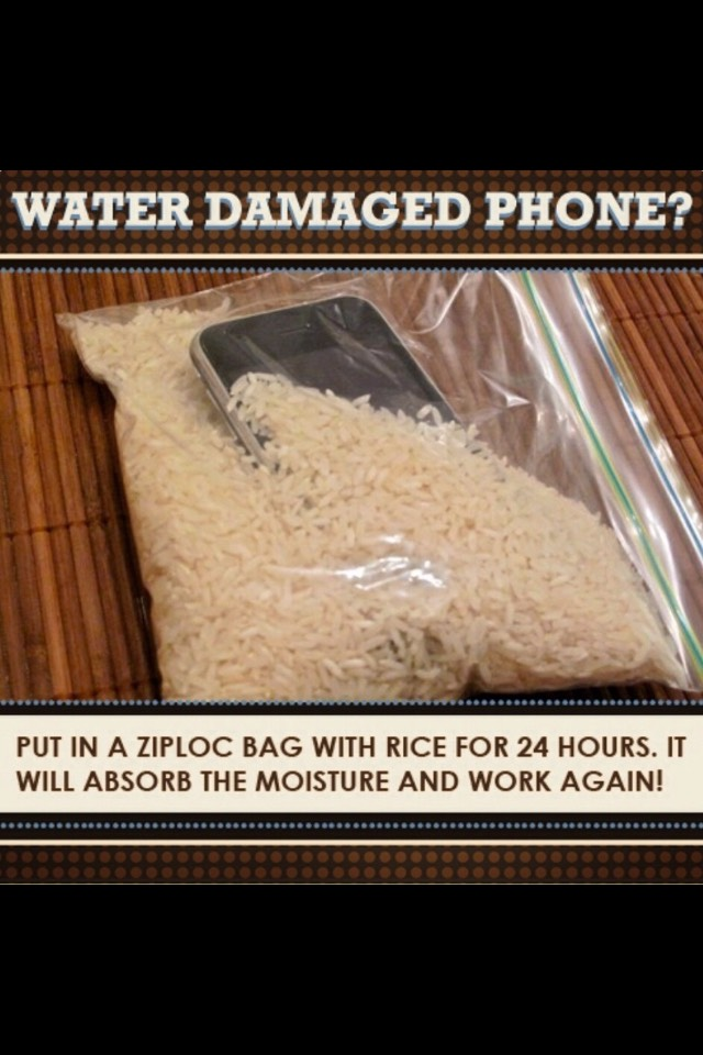 Believe me you're not the only one to drop your phone in water, to avoid the water going into the phone put it in a bowl/ bag of rice, the rice will soak up the excess water💦📱