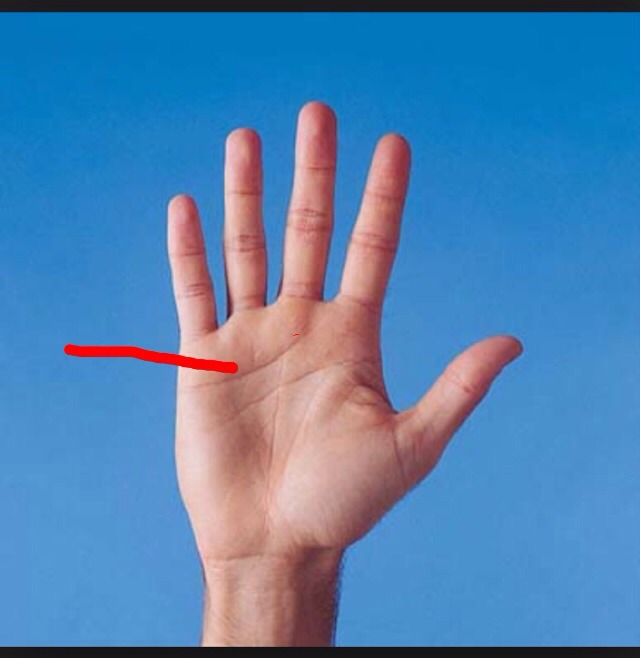 This line runs across the top of your palm. If you see a little fork at the beginning of the line (near the index), this means your a happy person who likes to keep busy. If you see a fork at the end of the line (near your little finger) it means your lucky. If the line is deep, you are kind-hearted