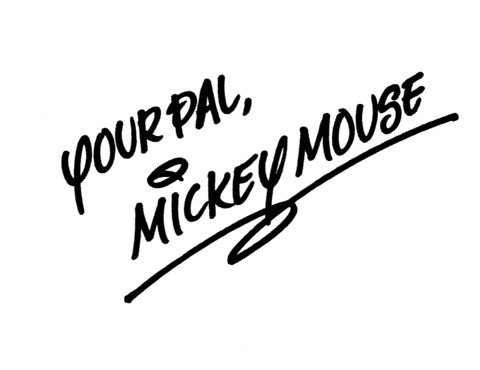 Character Meet: meeting your favourite Disney characters in select locations in the parks.  Character Autographs: You can collect autographs from Mickey and friends in all the Disney parks.