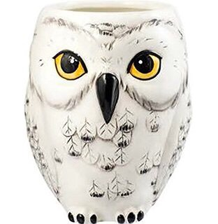 Hedwig Mug To drink your coffee while you read the Daily Prophet  https://www.amazon.com/gp/aw/d/B017AKUXIG/ref=mp_s_a_1_71?qid=1448853522&sr=8-71-spons&pi=AC_SX110_SY165_QL70&keywords=Harry+Potter+gift&psc=1