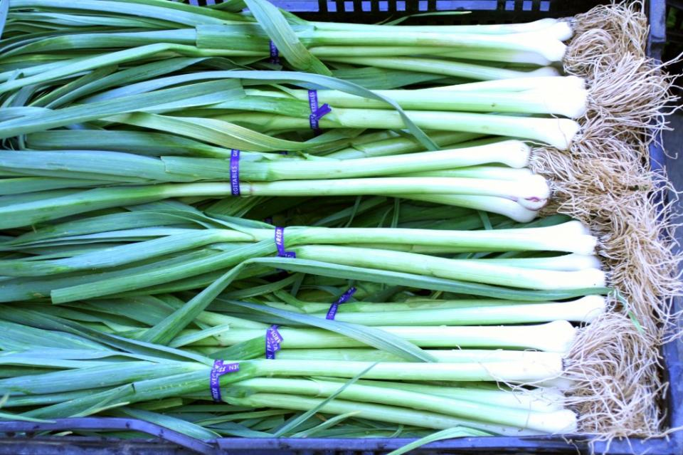 Garlic is pretty difficult to grow in containers, but garlic greens are as easy as buying a bulb of garlic from the grocery store and sticking one of the cloves in dirt. Literally, that's about it.