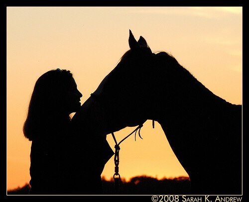 It took me about eight years to figure out what helps me most. My pediatrician put me on medicine which I still take to this day. But what helps the most is horses I live on a farm and being around them simply calms me.these creatures are keepable of making you different in a good way.