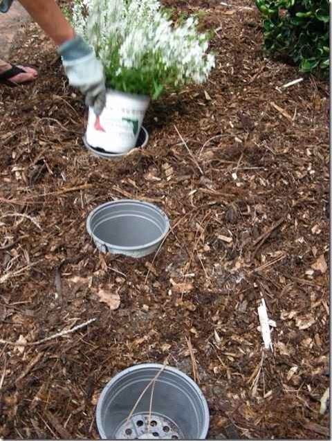 3. Easily switch out seasonal plants by placing your potted plants IN pots. Ah, the POT IN POT method.