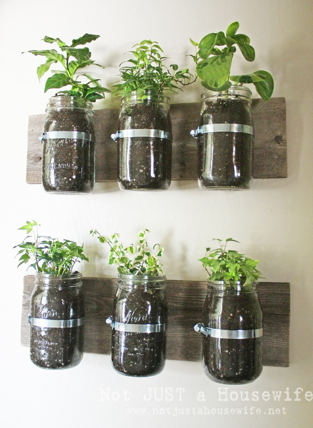Wall planters. You can plant your herbs for easy access when your cooking!