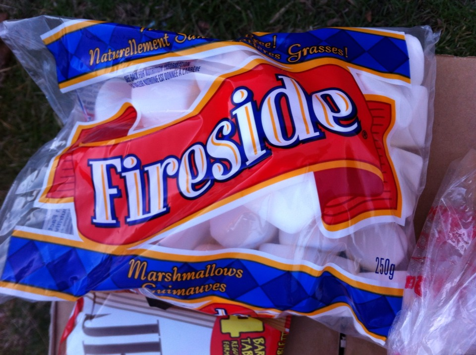 Marshmallows are also from bulk barn, make sure they are regular size or even small, the jumbo ones will be too big!