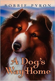 A Dogs Way Home... by Bobbie Pyron- if you like animals, read this--a loyal dog and his owner are separated by a car crash but miles of rough terrain can't keep them apart