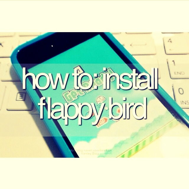 1- Go to get-flappy.com  2- Choose Android or Apple 3- Enjoy throwing your phone at the wall