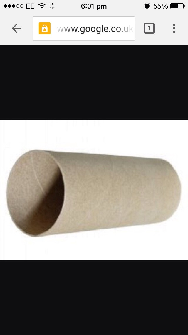 Take a toilet roll / kitchen roll tube and squash it 😊