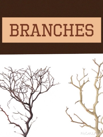And obvs. branches 💜