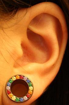 ear stretcher/ gauge