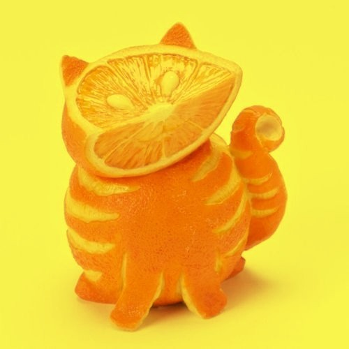 This cat is made entirely of oranges! So cool!