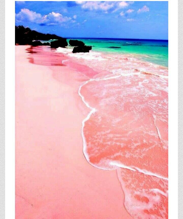 Pink Sand Beach, Isla Barbour, Bahamas