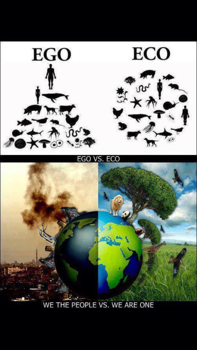 Crazy to think about, isn't it?!   Let US Save our world.