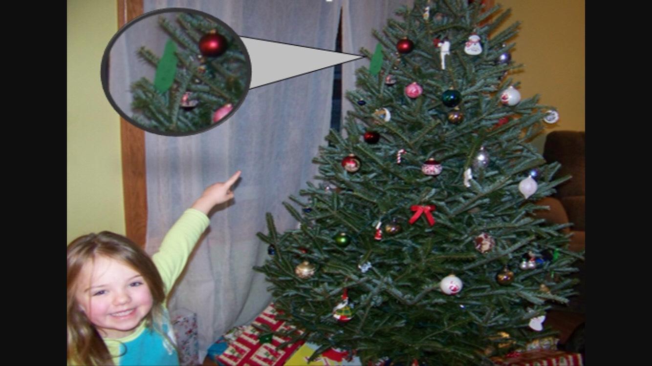 https://www.wendellaugust.com/items/10526_ofp_christmas_pickle?gclid=CJvwpqTRhtECFUa4wAodzpQCfA