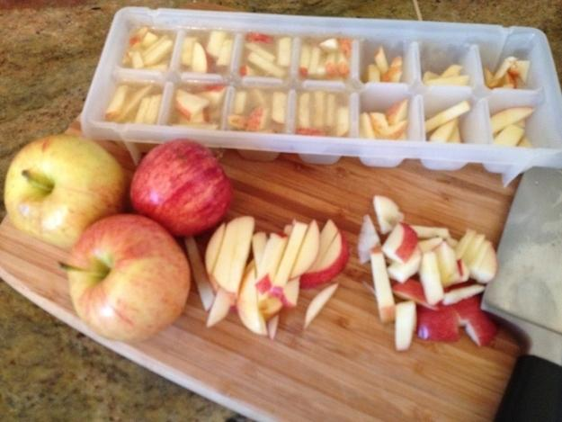 27. An inexpensive and easy summer treat for dogs: Cut up apples in chicken broth and freeze in an ice cube tray.