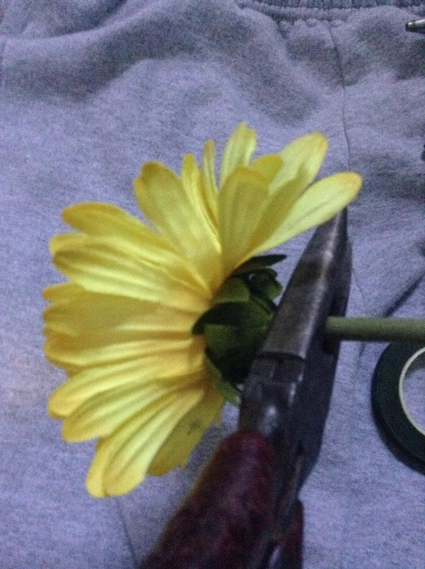 Cut the stem of the flower with the pliers .