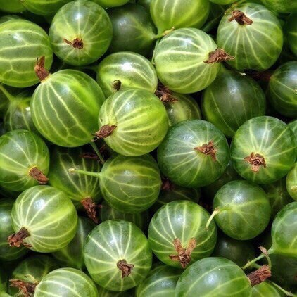 Remedy #5: use Indian gooseberry↠