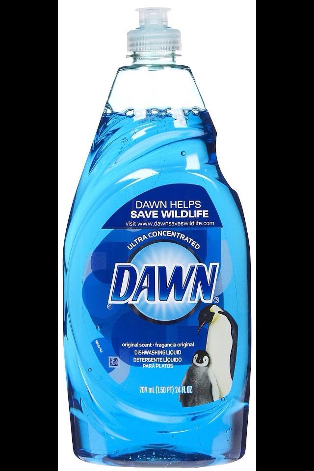 Dawn dish washing liquid kills fleas INSTANTLY!!