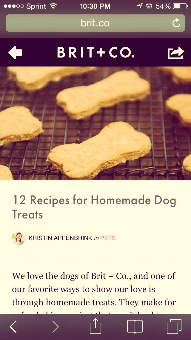 http://www.brit.co/#post/homemade-dog-treats. This website is awesome and I have 2 dogs and my boys love them. I have a Maltese and a Pitbull and their both picky eaters.
