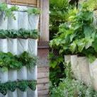 6. DIY Vertical Shoe Organizer Herb Garden