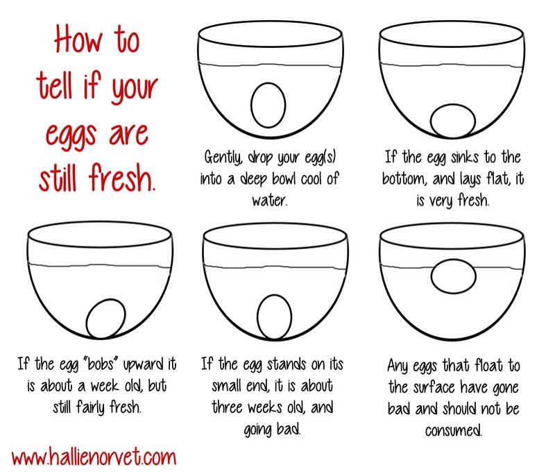 Fill a bowl with water, enough so that it covers the entire egg.   If egg lays flat at the bottom = fresh! If egg is still at the bottom but bobs upward = older but still fresh If egg is still at the bottom but points directly up = going bad  If egg is floating at the top = DO NOT EAT egg is BAD!!