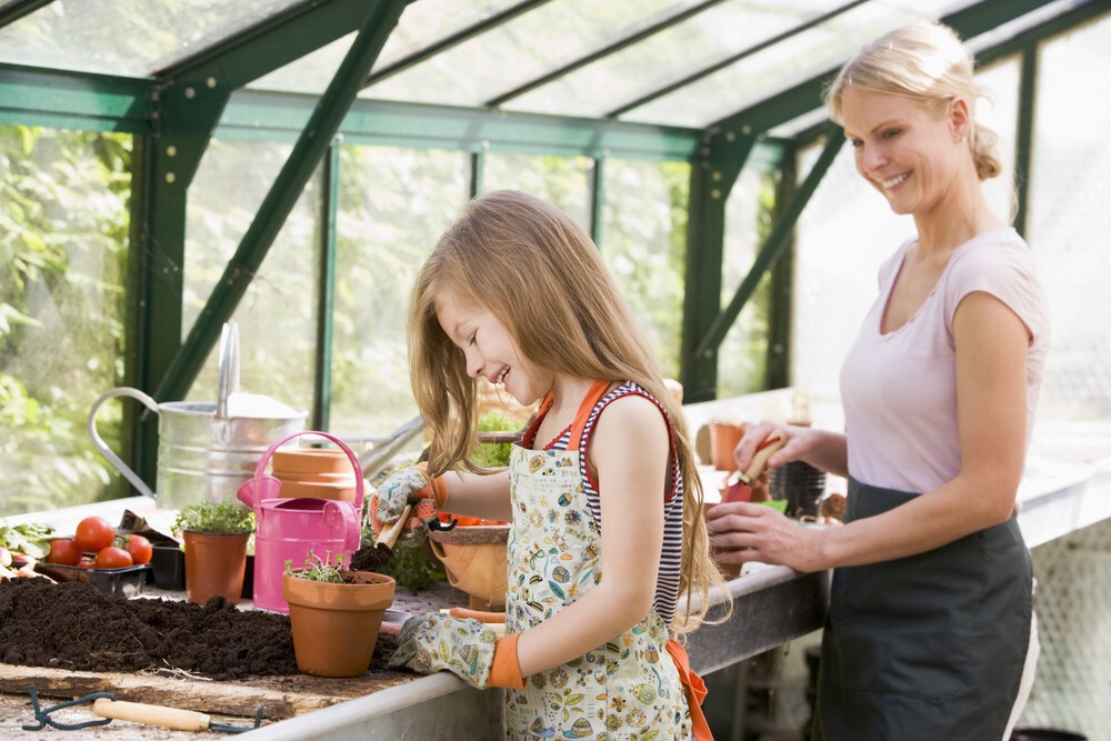 Set up a garden with your young one!