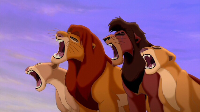 In The Lion King, tiger roars were used because lion roars weren't loud enough.