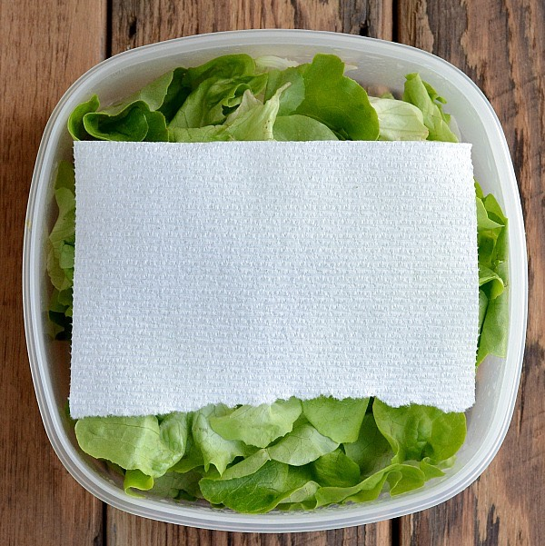 8. Store lettuce with paper towels inside of the container or bag to keep it crisp longer.