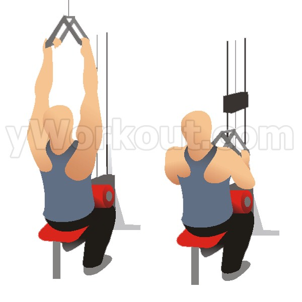 Close grip lat pull down: 4 sets of 12-15 reps