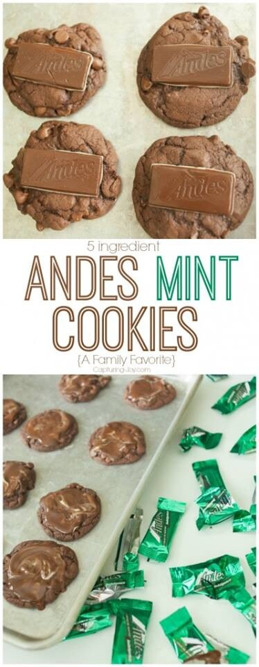 http://www.kristendukephotography.com/my-favorite-cookieschocolate-andes-mint/
