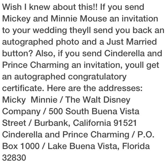 Invite your favorite disney characters to your wedding :)